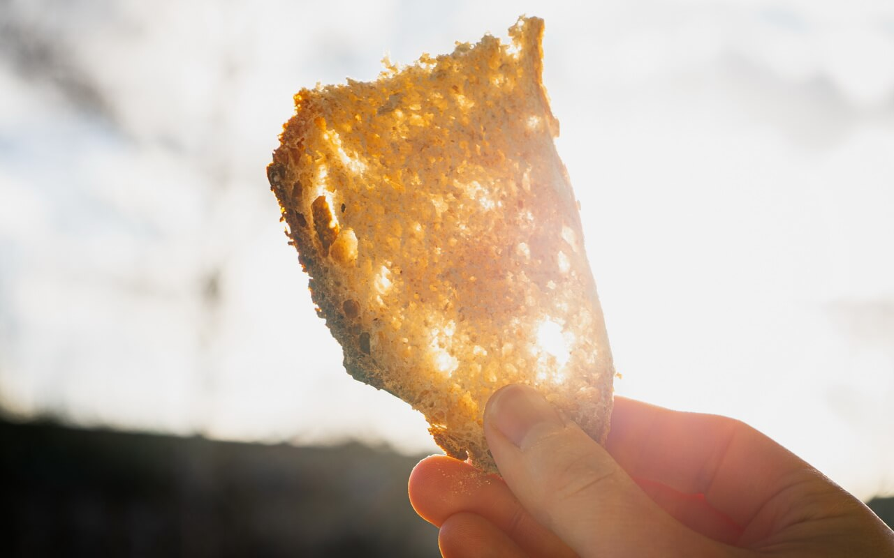 Sunny Spelt Sourdough Bread Slice Against The Sun